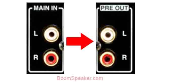 Connect the Speaker Terminals to the Amplifiers