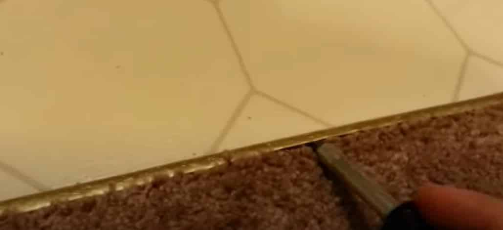 Loosen The Carpet Liner with a screwdriver