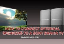 how to connect external speakers to sony bravia tv
