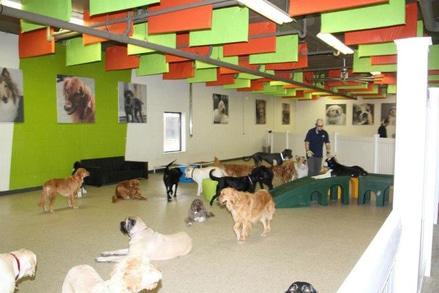 Acoustical-Baffles-dog-soundproofing
